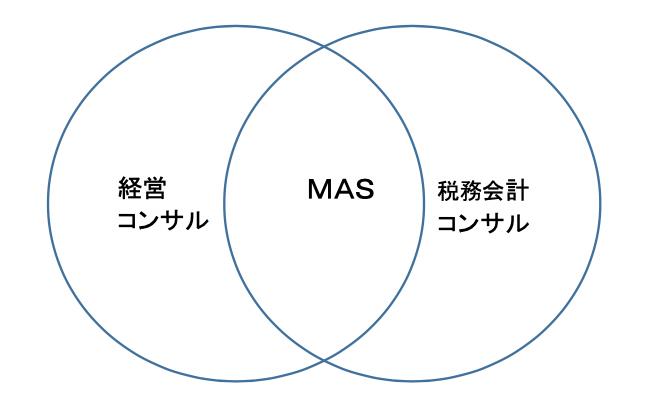MASをビジネスモデルに組み込む